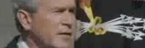 Is Bush an