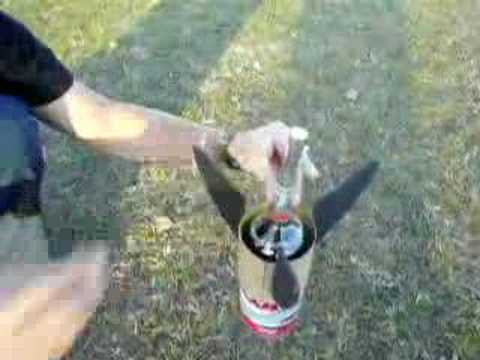 Mentos and Diet Coke Rocket